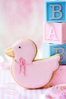 BabyMoon Duck