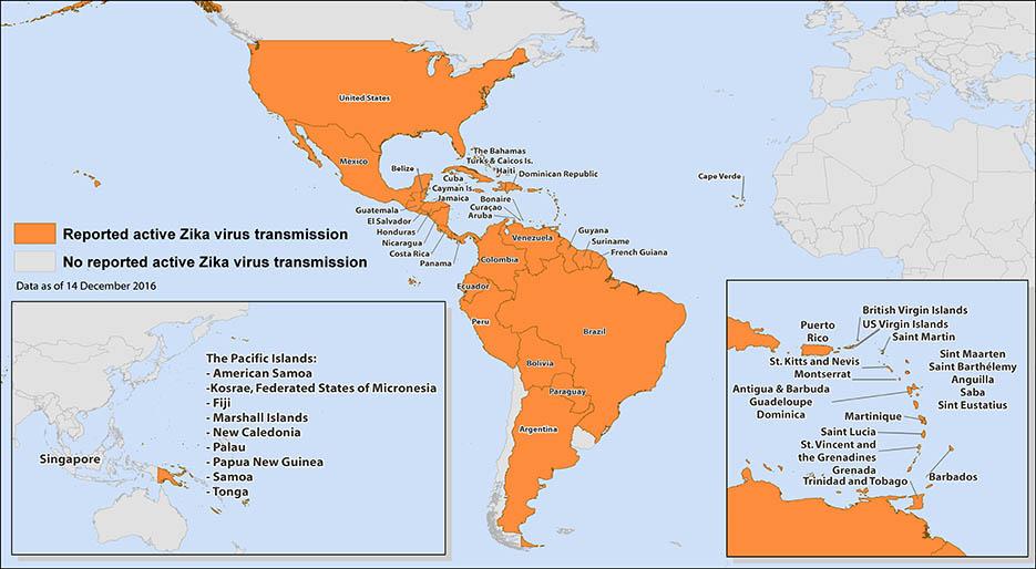 Zika Virus Babymoon Travel