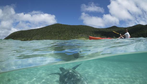 Lord Howe Island Babymoon