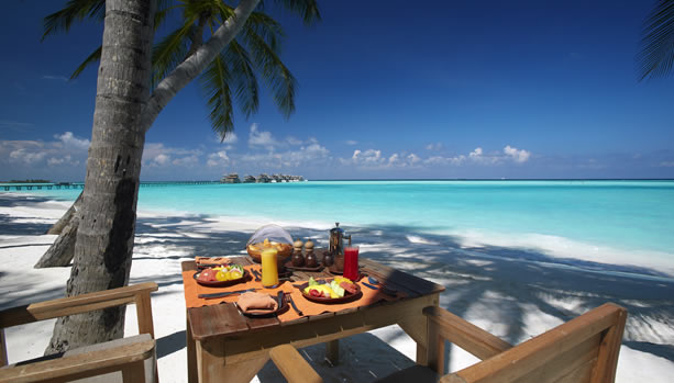 Maldives Babymoon at Gili Lankanfushi - Breakfast by the Beach