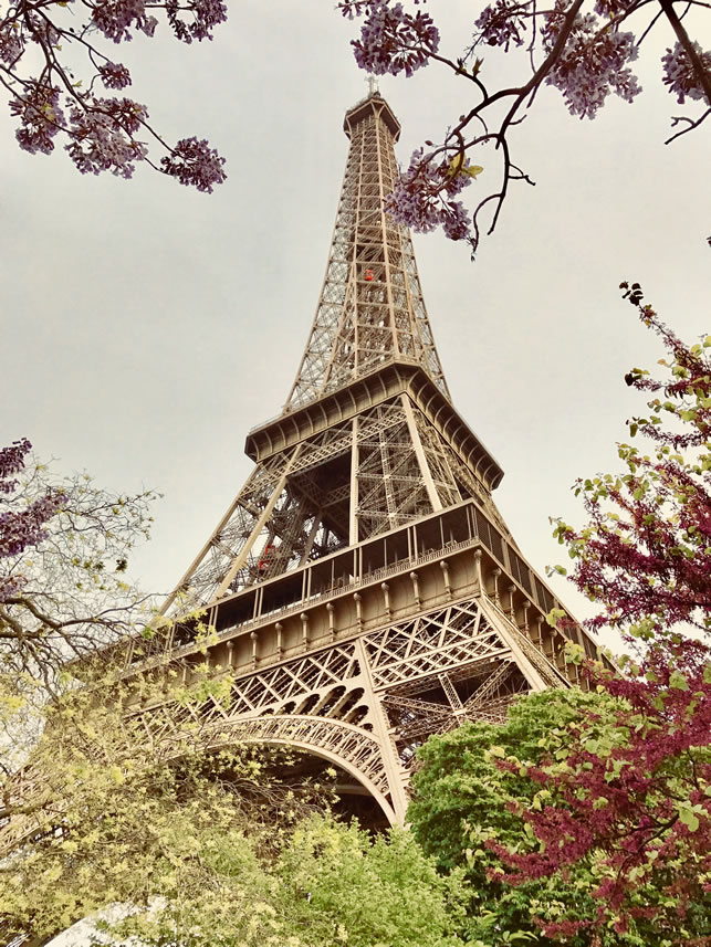 Eiffel Tower, Paris. Image: Ilonka Molijn, private